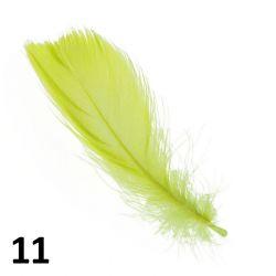 Peříčka na nehty č.11 - 5 ks