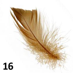 Peříčka na nehty č.16 - 5 ks